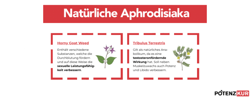 natuerliche-aphrodisiaka-lustmacher