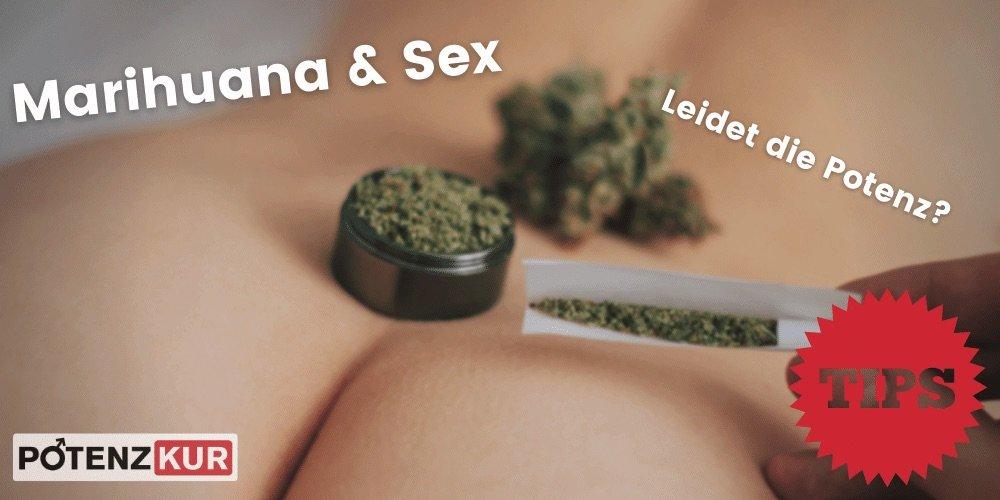 marihuana-potenz-erektion